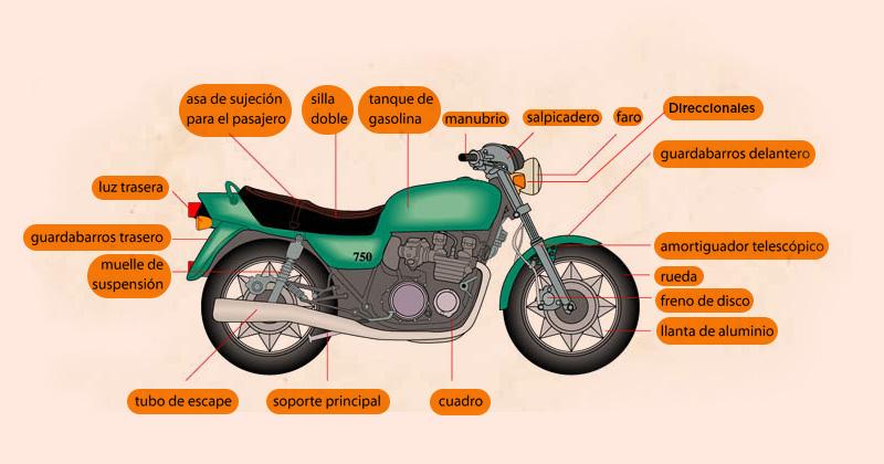 anatomia LA ANATOMÍA DE UNA MOTOCICLETA LA ANATOMÍA DE UNA MOTOCICLETA anatomia