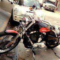 Harley Sporsters Coustom 1200 2009